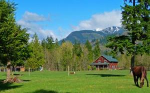 farm 6494 S Pass Rd. Maple Falls, Washington - Hometaurus