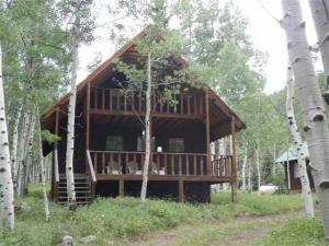 home for sale 543 Pagosa Ave. Jasper, Colorado - Hometaurus