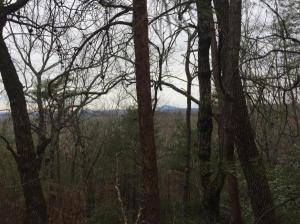 land for sale Lot 24 Highlands Drive. Clarkesville, Georgia - Hometaurus
