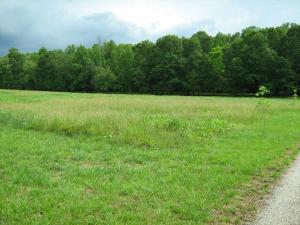 land for sale Lt 13 Farm Hill. Clarkesville, Georgia - Hometaurus