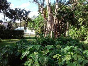 748 NE 114 St. Biscayne Park, Florida - Hometaurus