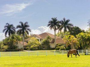 4660 SW 148 Av. Southwest Ranches, Florida - Hometaurus