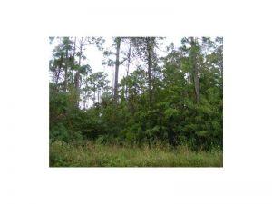5913 NW 66 Ave. Parkland, Florida - Hometaurus