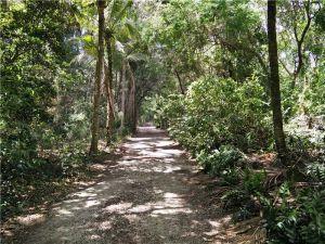 23100 SW 156 Av. Miami, Florida - Hometaurus