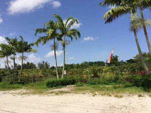 12625 SW 45 St. Miami, Florida - Hometaurus