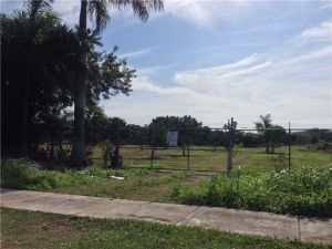 296 St. Homestead, Florida - Hometaurus