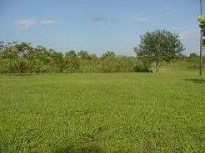 0 Old Cutler. Kendall, Florida - Hometaurus